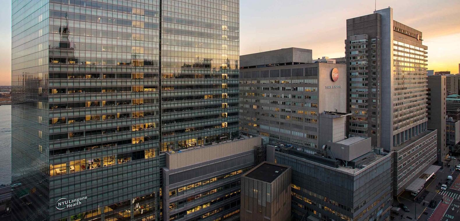 New York University Medical School